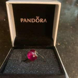 Pandora Retired Essence Charm Silver & Ruby